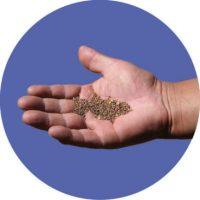 Moestuin biologische zaadjes zaden Gaiagoods insectenhotels-07